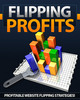 Thumbnail Flipping Profits-Mrr